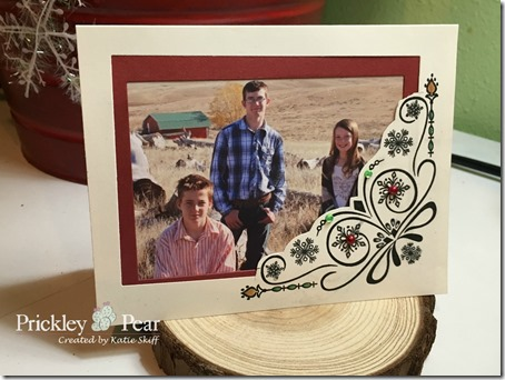 PP Nov Release Photo Frame