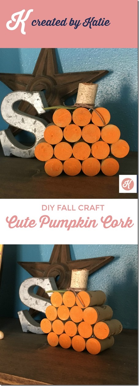 Cork Pumpkin Pin